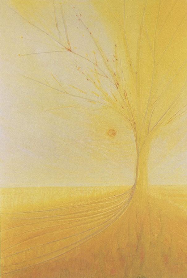 Luis Sloboda,Wild Rose, Serie Bach-Blütenportraits